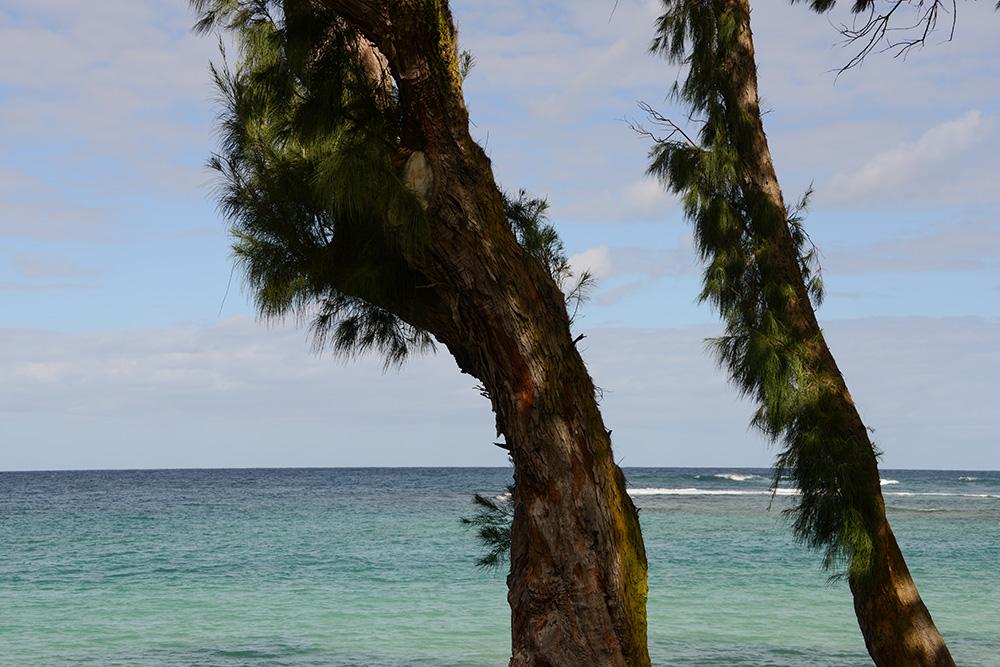 Oahu Hawaii © 2017 Resor och äventyr