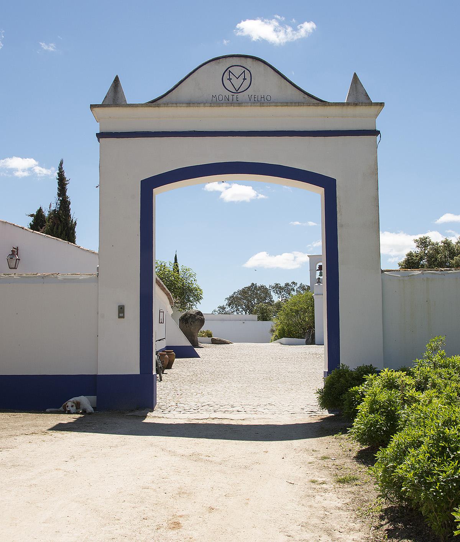 Dressyrvecka på Monte Velho Equo Resort, Arraiolos, Portugal