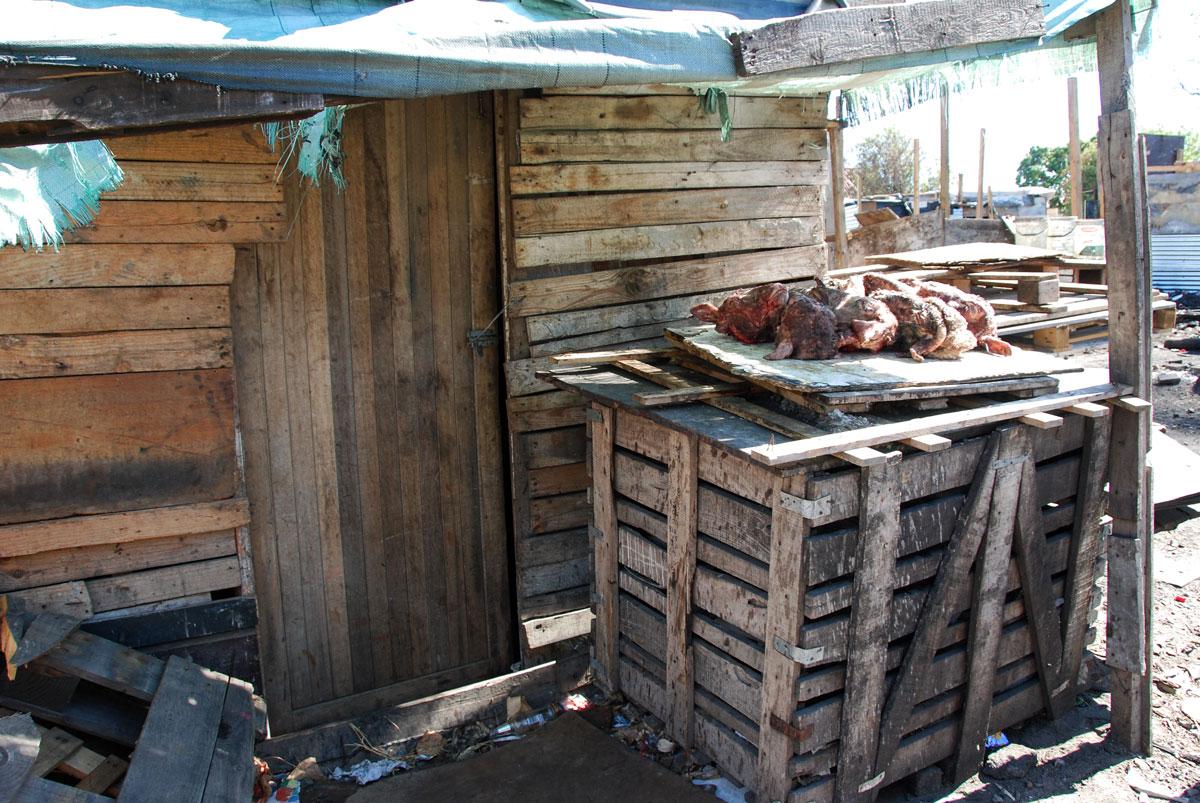 Sydafrika Langa Smiley resorochaventyr.se